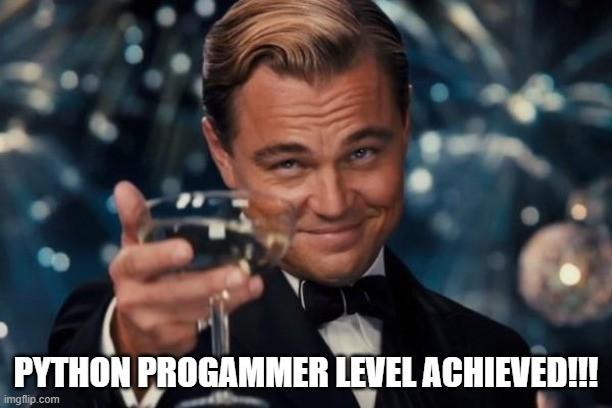 python programmer